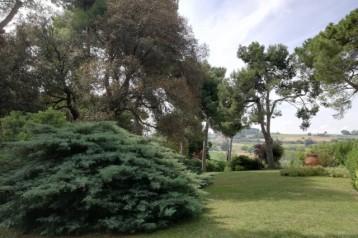 V - 1609   porzione di villa a  Falconara Alta